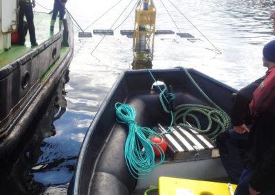 EB_marine_rov_services_tjenester_subsea_observasjon_observation_dykker_fundamentering_farlig_yrkesdykker_arbeidsdykker_anleggsdykker_forskning_krabbe