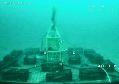 EB_marine_rov_services_tjenester_subsea_observasjon_observation_dykker_fundamentering_farlig_yrkesdykker_arbeidsdykker_anleggsdykker_ledning_forskning_seismikk_krabbe